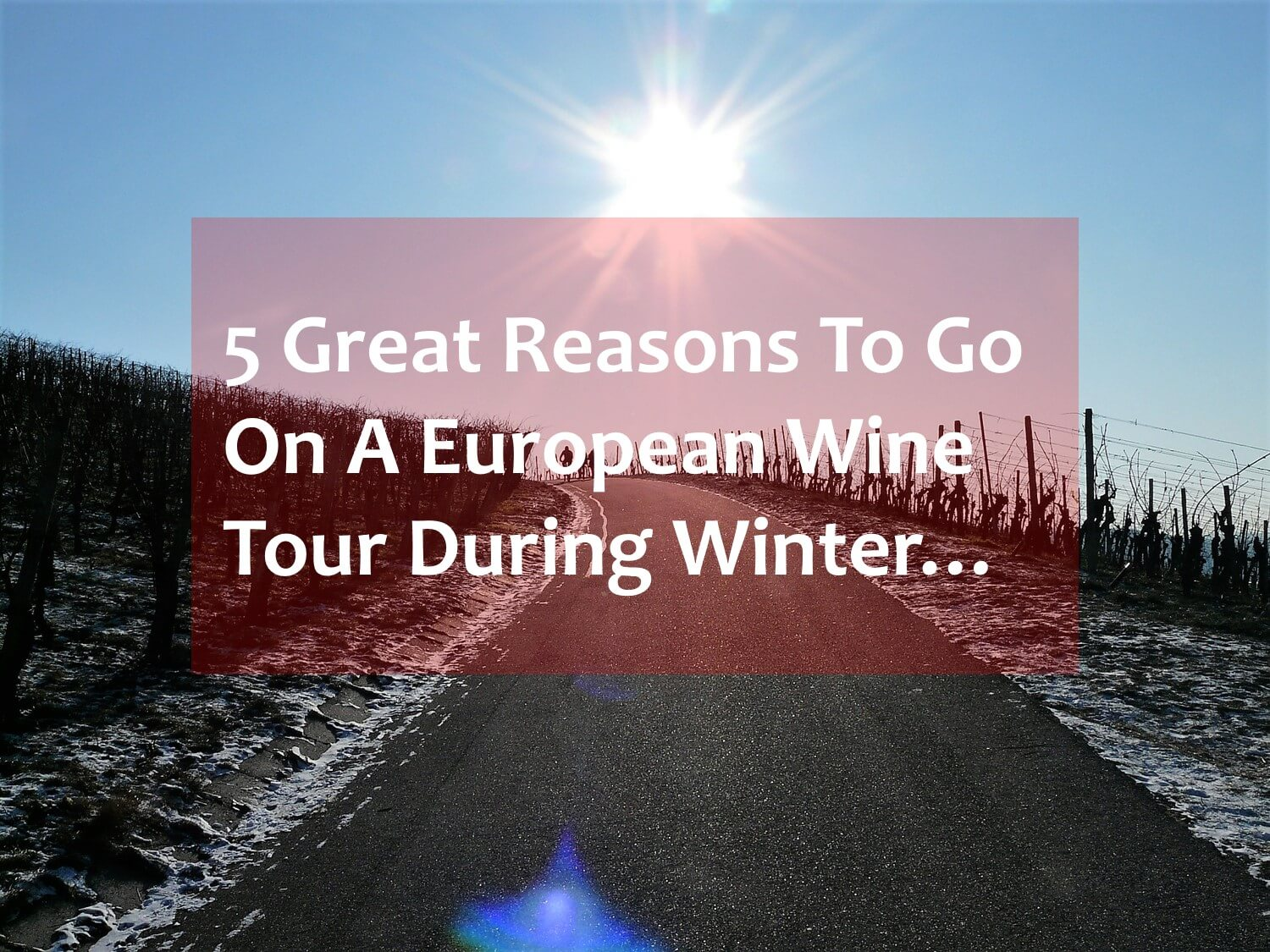 European winter wine tour