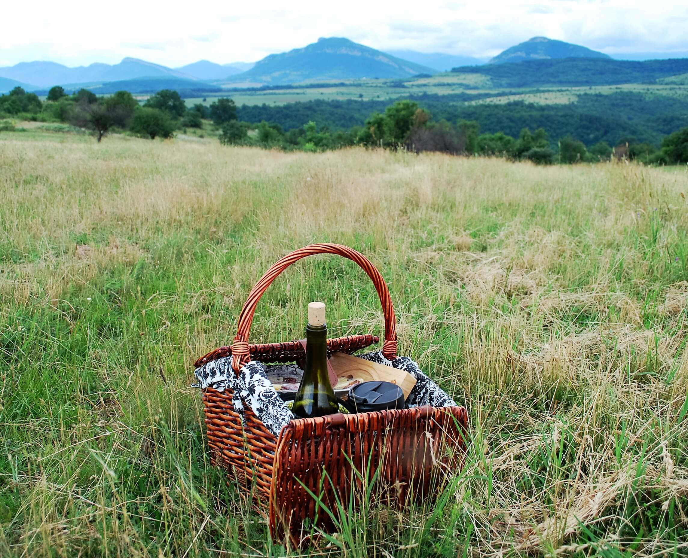 Wine Safari Picnic Basket