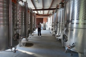 The stainless steel tanks greet you at the doorway of Villa Yustina's production area